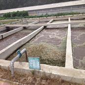 生猪屠宰废水处理工程
